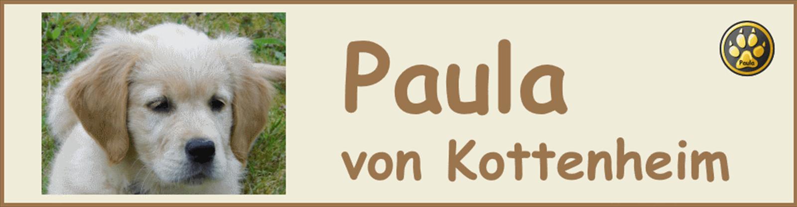 Paula-Banner-02