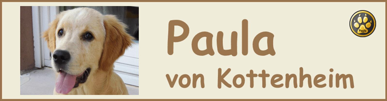Paula-Banner-03