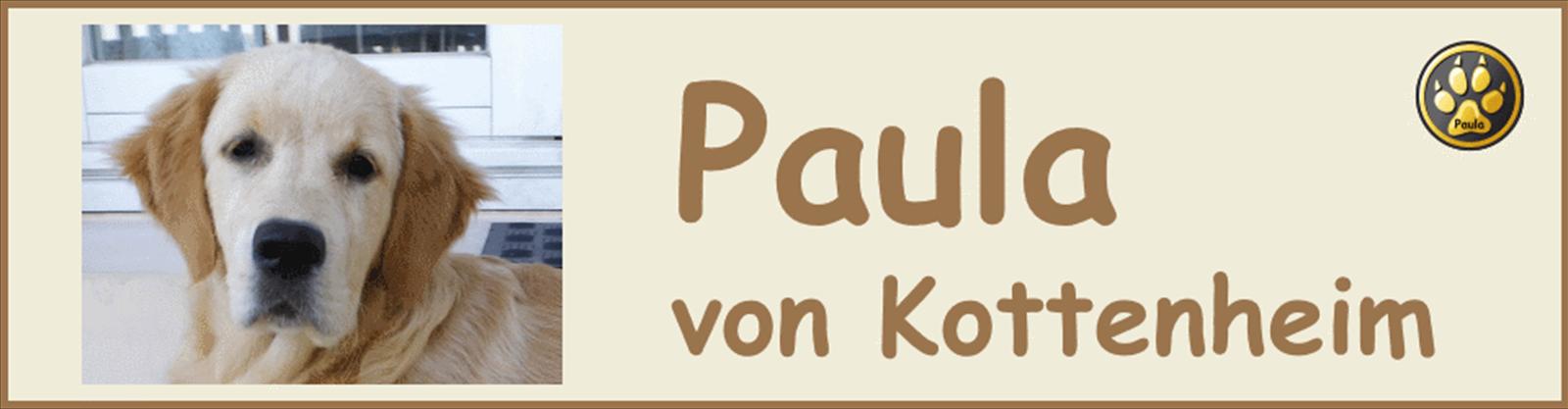 Paula-Banner-04