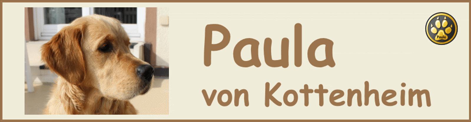 Paula-Banner-05