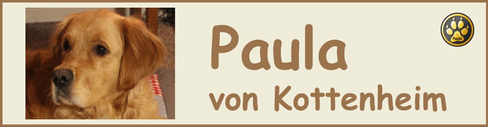 Paula-Banner-06