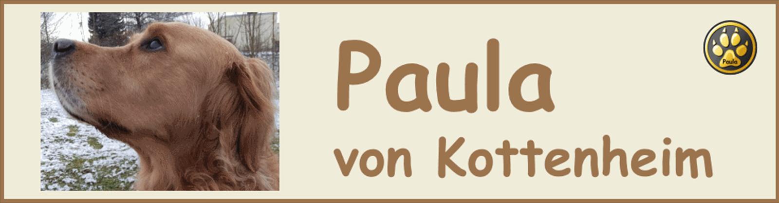 Paula-Banner-07