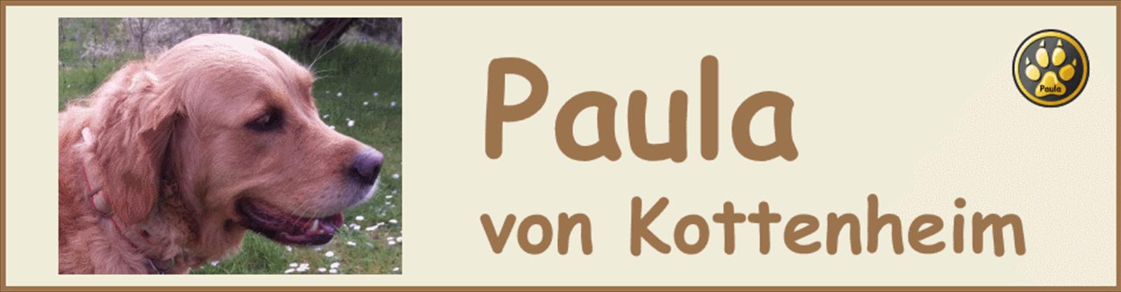 Paula-Banner-08