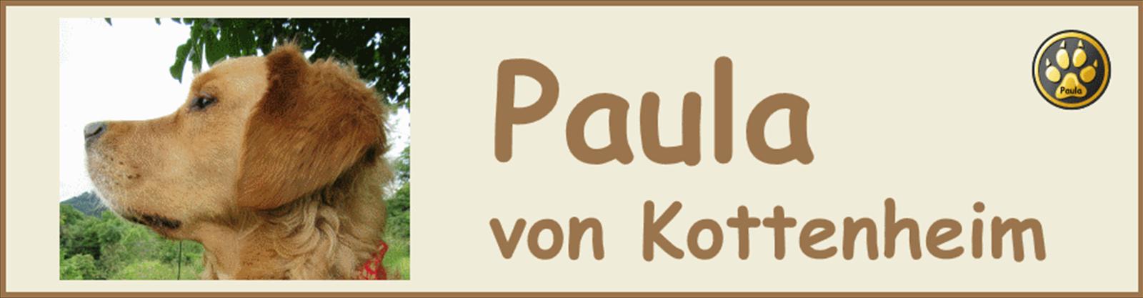Paula-Banner-09