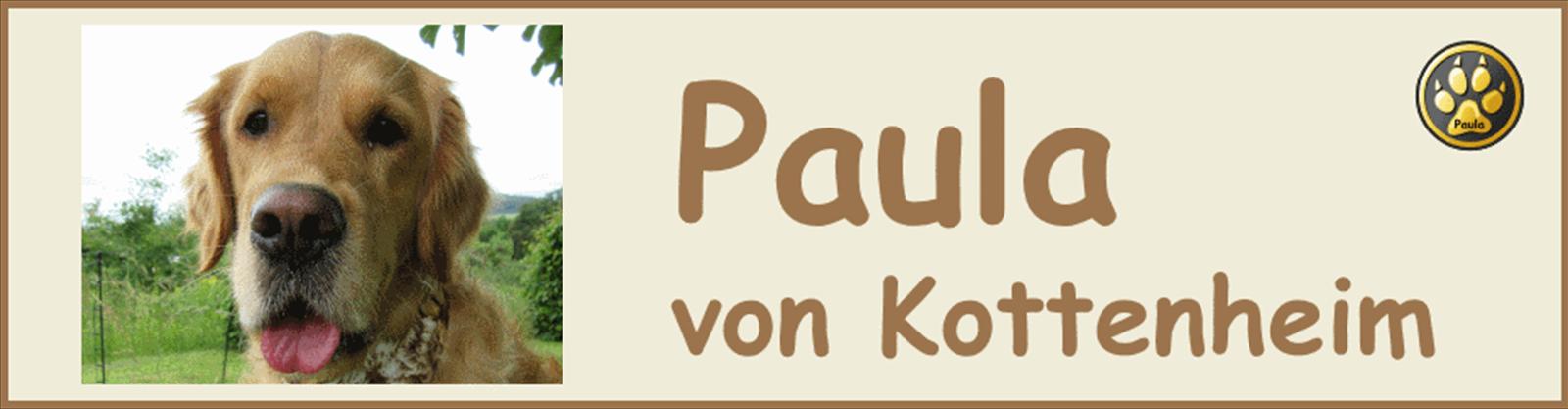 Paula-Banner-10