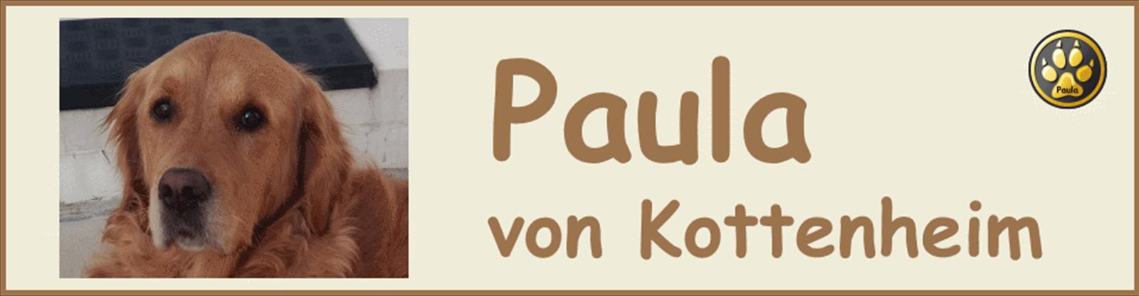 Paula-Banner-11