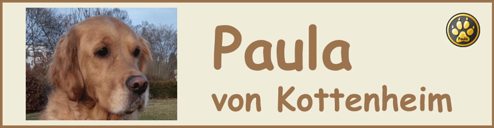 Paula-Banner-12