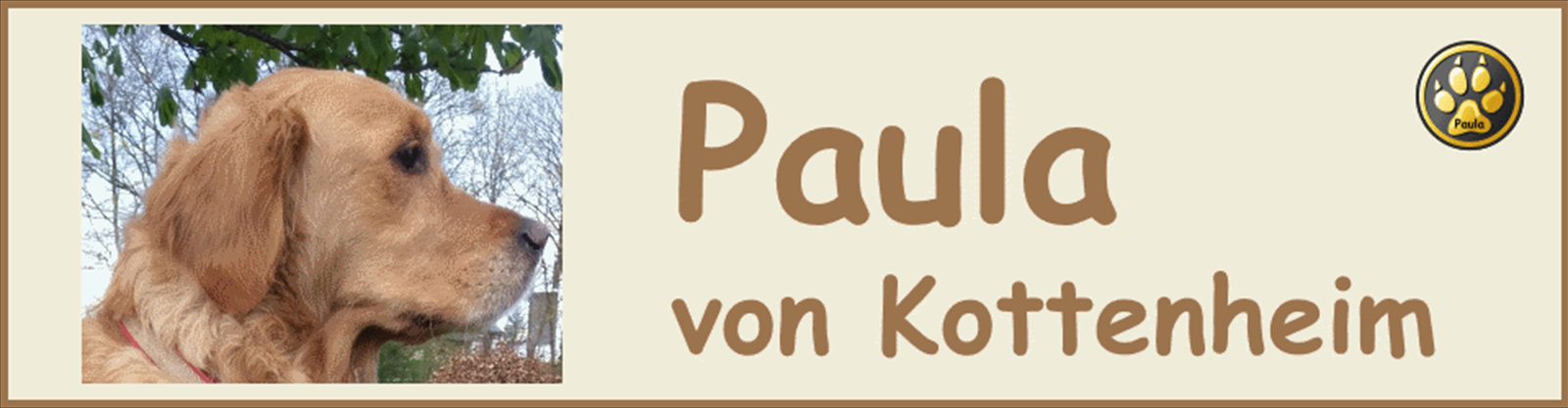 Paula-Banner-13