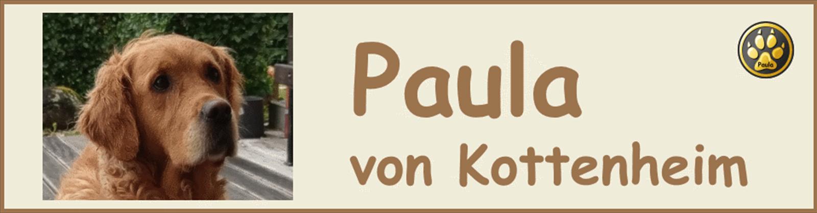 Paula-Banner-14