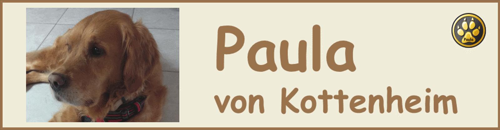 Paula-Banner-15